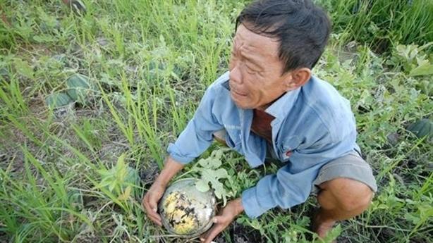 Trung Quốc trồng dưa hấu ở Campuchia: Phải biết lo đi