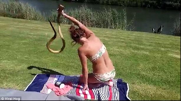 Thiếu nữ diện bikini tay không bắt rắn hổ mang gây sốc