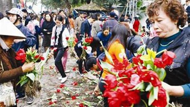 Hà Nội cho du học trồng cây: Không nên học Trung Quốc