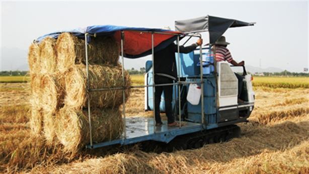 Nông dân kiếm hàng triệu đồng mỗi ngày nhờ bán rơm