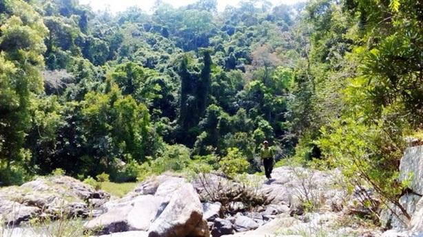 Xây thủy điện trong khu bảo tồn: Không chỉ phá 25ha rừng