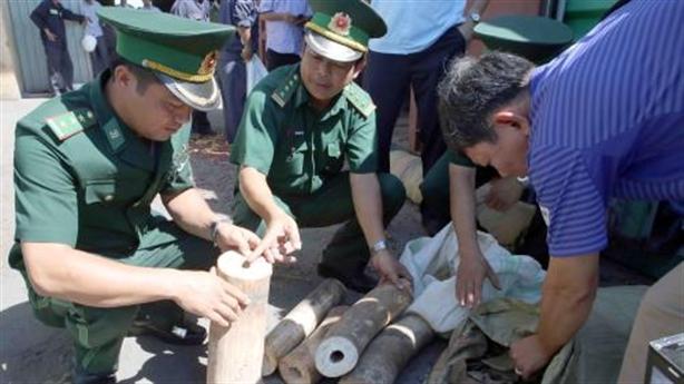 Đề xuất tiêu hủy ngà voi lậu tại Hoàng thành Thăng Long