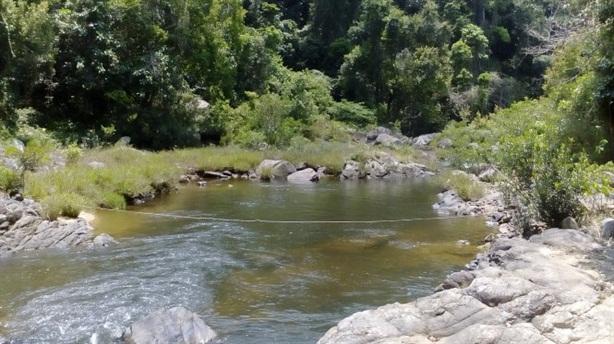 Xây thủy điện trong vườn quốc gia: Đích ngắm mới