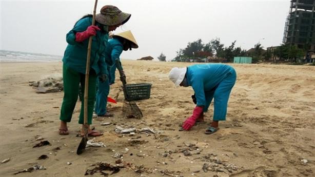Ai ăn cá miền Trung: Lãnh đạo làm gương ăn thử?