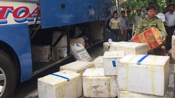 Gần 5 tạ cá chết theo xe khách Quảng Trị tới TP.HCM