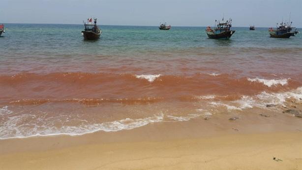 Xuất hiện vệt nước đỏ sát biển: Hiện tượng bất thường
