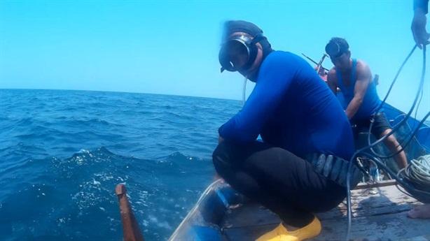 Nghi vấn cá chết xếp lớp: Đoàn công tác không thấy