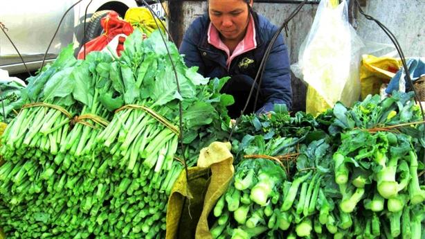 Nông phẩm không để xuất khẩu, to đẹp để làm gì?