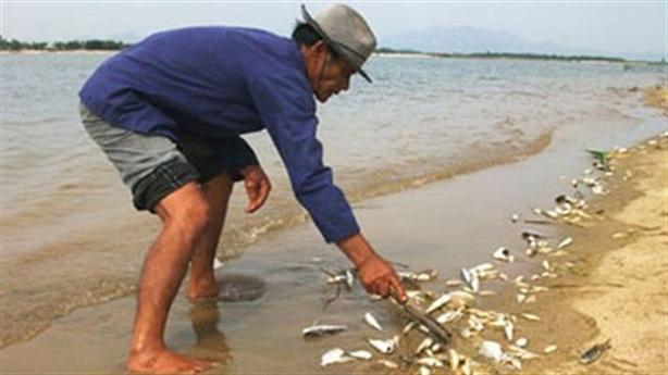 Báo cáo môi trường Formosa sơ sài: Tôi chỉ là người ký