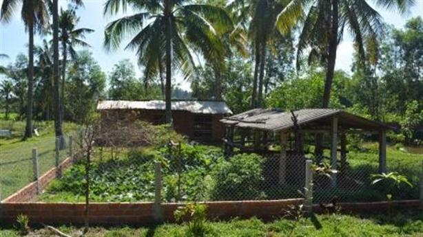 Một lão nông xây chuồng vịt bị xử phạt 1,5 triệu đồng