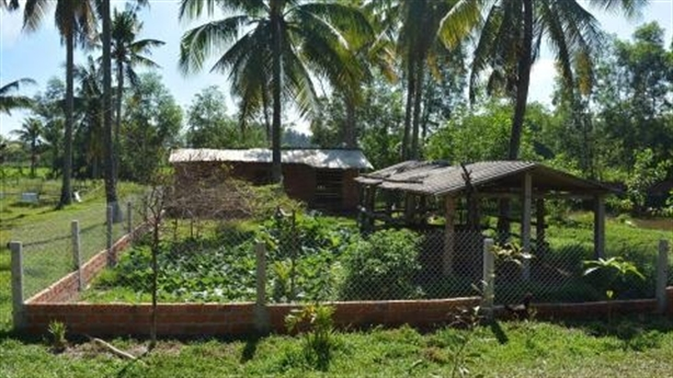 Lão nông 70 tuổi xây chuồng vịt bị xử phạt:Chỉ đạo khẩn...