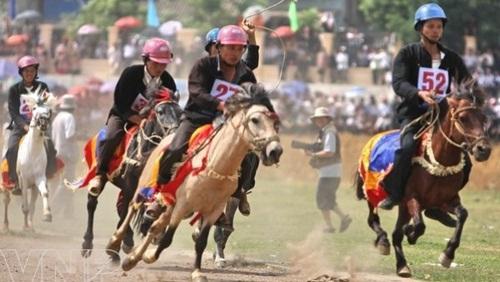 Hà Nội sắp có trường đua ngựa triệu đô
