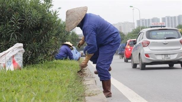 53 tỷ cắt cỏ đại lộ Thăng Lo