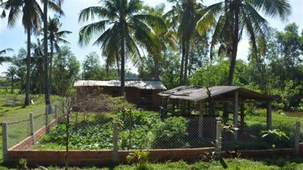 Lão nông xây chuồng vịt bị xử phạt: Hứa rút kinh nghiệm