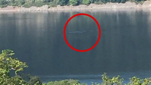 Đang ăn trưa, du khách trông thấy quái vật hồ Loch Ness?