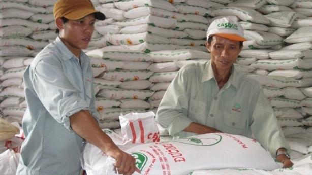 Hiệp hội Mía-Đường xin nhập đường thô: Bỏ rơi người trồng mía?