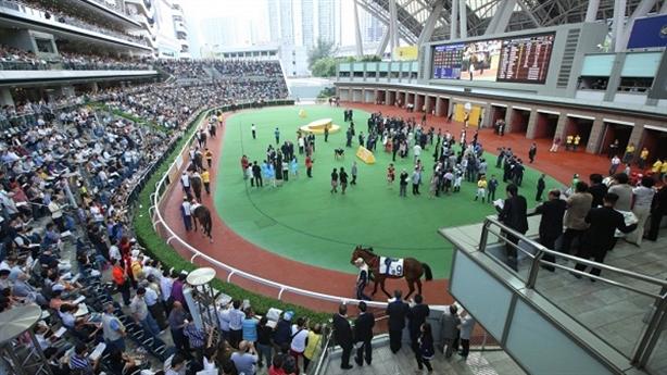 Đề xuất mở trường đua ngựa: Người Việt thích thử vận may?