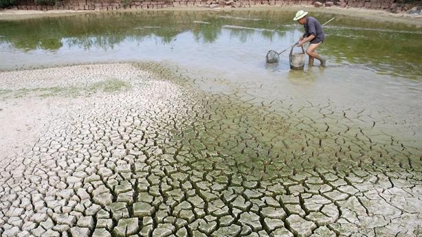 Hậu Giang trước thách thức biến đổi khí hậu toàn cầu