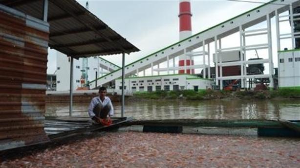Vụ nhà máy TQ bức tử sông Hậu: Giải thích nửa vời