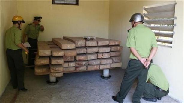 GĐ Sở dùng kho cất gỗ trái phép: Chỉ đạo nóng