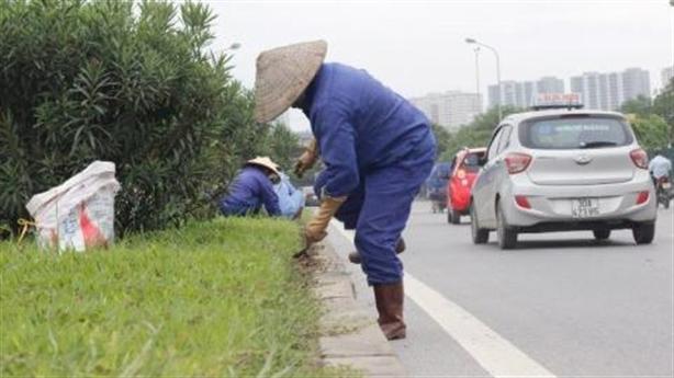 Hà Nội chốt giá cắt tỉa cỏ: Con số thực