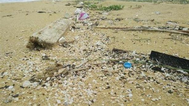 Dầu vón cục ngập bờ biển Quảng Nam: Hành động nóng