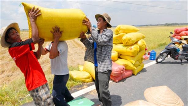 Tốn 20.000 USD xin giấy phép xuất khẩu gạo: Dân gánh hết?