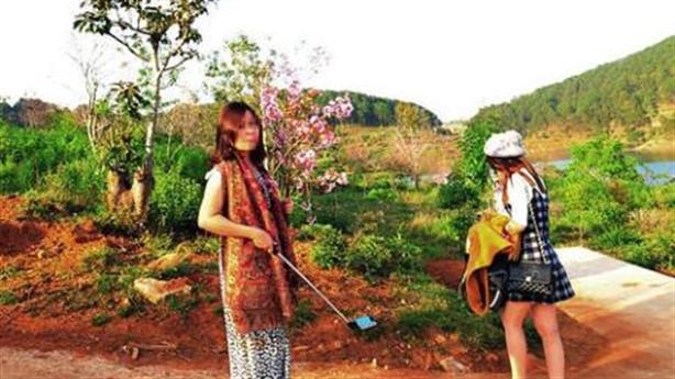 Vụ bẻ hoa Đà Lạt: Bình Thuận không nhân nhượng