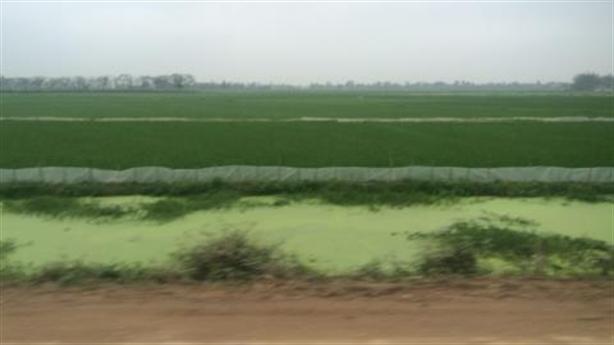 Biến ruộng thành đại nghĩa trang: Bắc Ninh thừa nhận sự thật