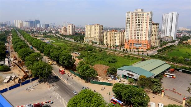 Hà Nội chặt chuyển 1.300 cây: Không muốn nhưng buộc phải làm