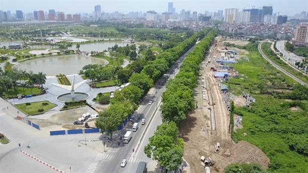 Hà Nội tính thay 4.000 cây xà cừ: Mất phố lá vàng?