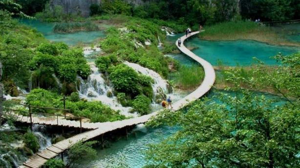 Xây cáp treo tại vườn quốc gia Bạch Mã: Sao lại vội?
