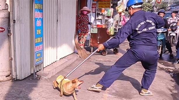 Đội bắt chó thả rông chứng minh tấm lòng cao cả