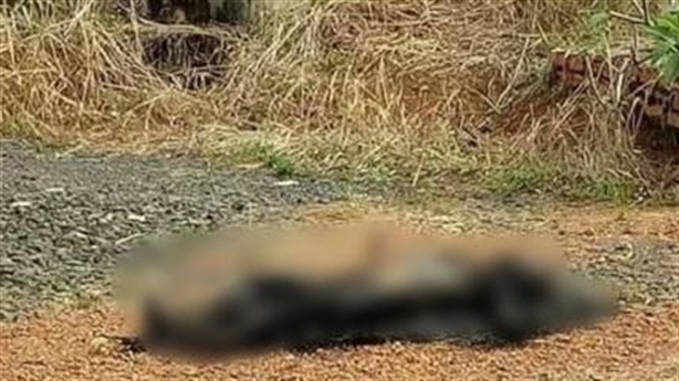 Giết vợ rồi ra nghĩa trang đốt xác: Về nhà ngủ ngon