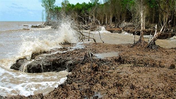 Chính phủ ra nghị quyết phát triển ĐBSCL bền vững