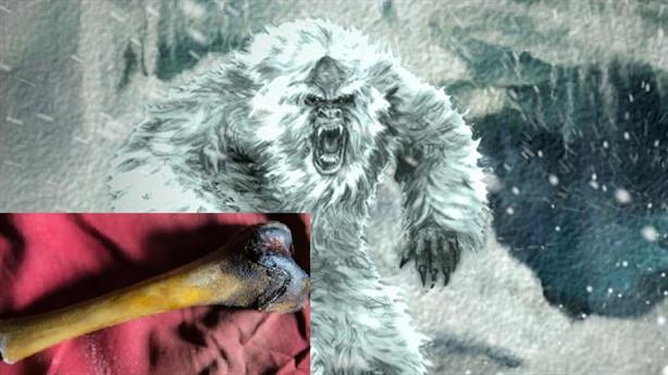 Giải mã được bí ẩn người tuyết khổng lồ Yeti