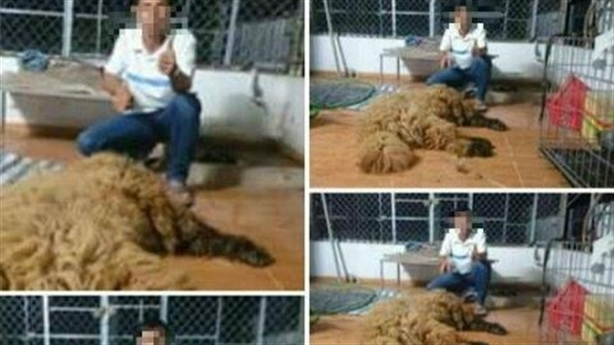 'Công tử' Bạc Liêu thịt chó Ngao Tây Tạng phân trần nóng
