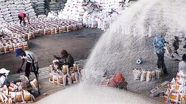 Mời doanh nghiệp Trung Quốc mua gạo Việt: Tốt nhưng chưa đủ