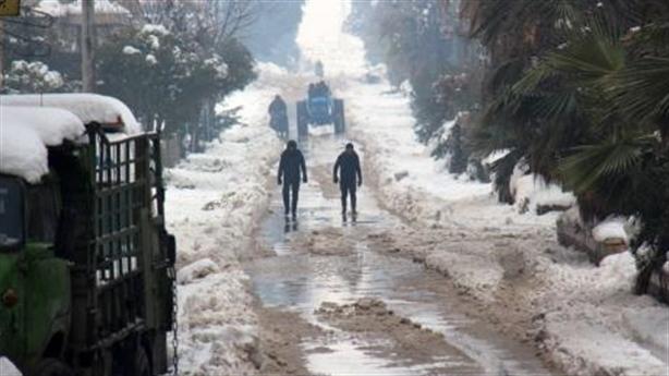 Nghị sĩ Mỹ: Phương Tây dựng kịch vũ khí hoá học Syria