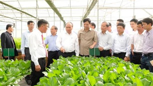 Ứng dụng công nghệ cao, gia tăng giá trị nông sản