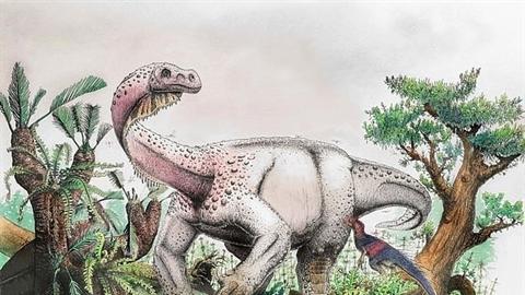 Phát hiện khủng long khổng lồ cực quan trọng
