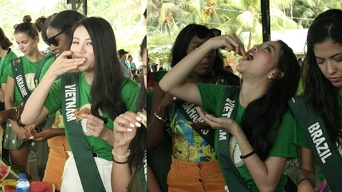 Đăng quang Hoa hậu Trái đất,nhan sắc Việt giậm chân tại chỗ?