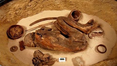 Những bí mật về xác ướp 'già' hơn Pharaoh cả nghìn năm