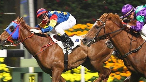 Hà Nội xây trường đua ngựa 500 triệu USD
