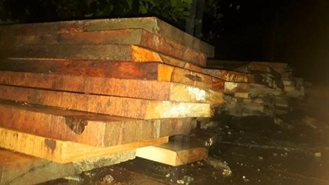 Điều khó hiểu vụ gỗ quý trong nhà máy thủy điện