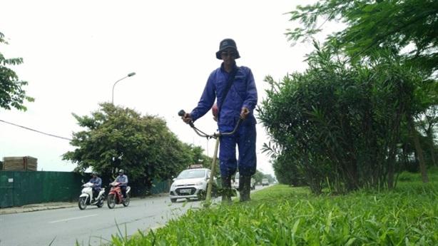 3 năm trồng cây Hà Nội chi hết 256 tỷ đồng