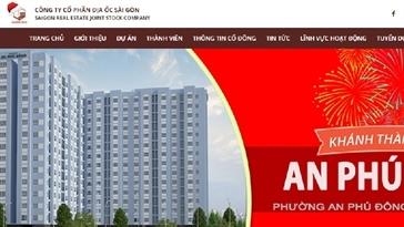 Đại gia Địa ốc Sài Gòn bị truy thu thuế
