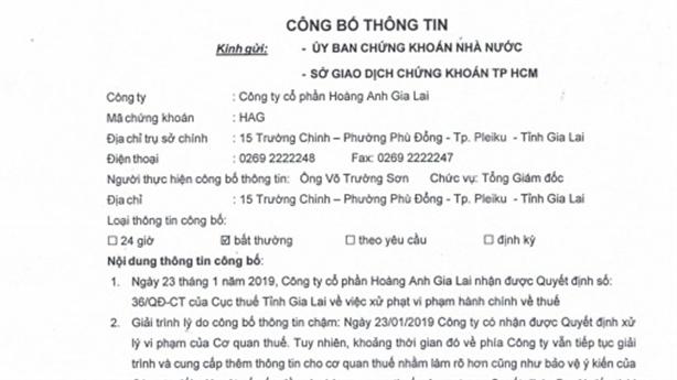 Hoàng Anh Gia Lai bị phạt, truy thu thuế gần 11 tỷ