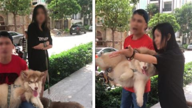 Việt kiều dắt chó nằm máy lạnh: Hai thái độ trái ngược