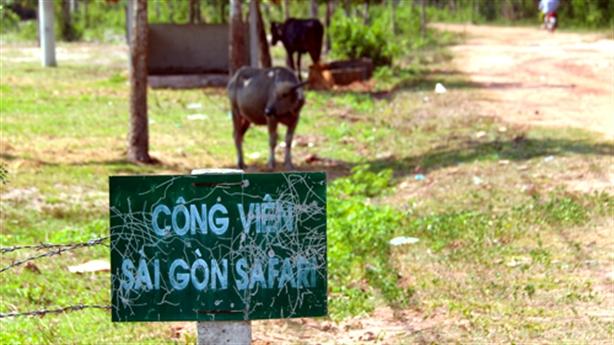 Kiến nghị UBND TP.HCM kiểm điểm vì dự án Sài Gòn Safari
